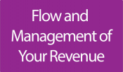 1. Flow and Management of Revenue
